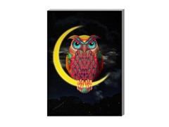 Owl s hi (2 Sizes)