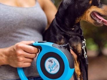 Pretty Popular Pet Products