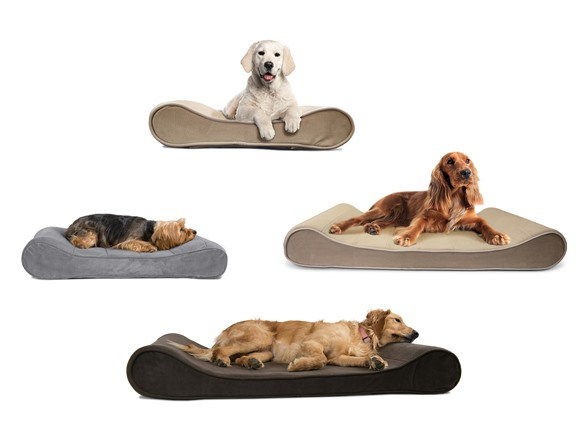 Furhaven Orthopedic Pet Bed With Seat Belt Clip