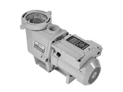 Pentair Variable Speed Pump, 230-Volt