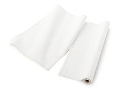 Ecru Placemat 12-Ct Cotton