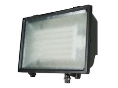 Economy Floodlight - Compact Flourescent