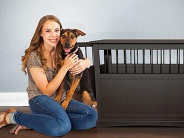 Pet Furniture For Cat & Dog