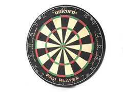 Sportcraft Pro Player Bristle Dartboard
