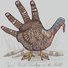 Hand Turkey in the Wild