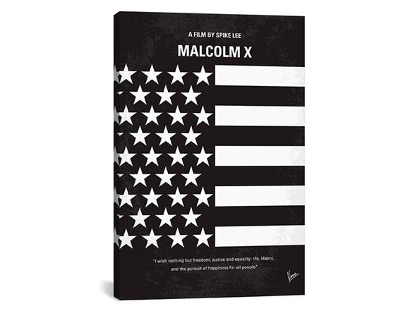 Malcolm X Gun Poster