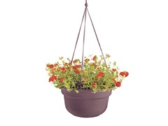 6PK Hanging Basket, 12-Inch, Peppercorn