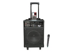 600W VHF Wireless Portable PA with Mic