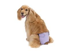 Clean Go Pet Female PupPants-Medium-Lavender- Set of 2