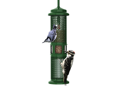 Brome Squirrel Buster Peanut Feeder