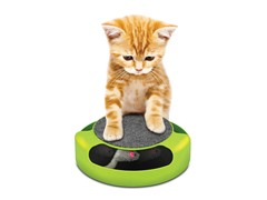 Feline Frenzy Pet Game - Random Color