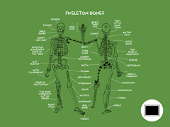 Know Your Bones Poster