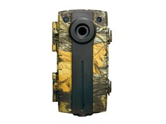 Truth DPS Trail and Game Camera