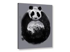 Sumi Panda