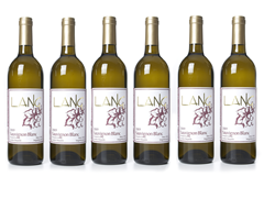 Lang Wines Sauvignon Blanc (6)