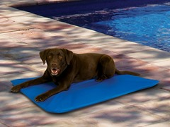Pet Comfort Solutions Large Cool Pad Blue