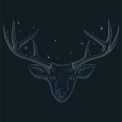 His antlers held a crown of stars