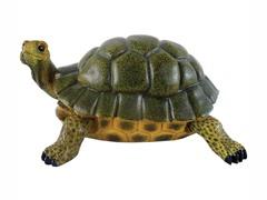 Turtle Statue, Medium