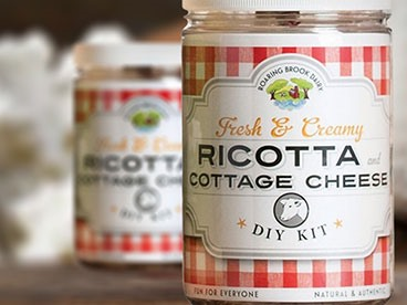 Ricotta and Cottage Cheese DIY Kit