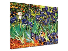 Irises 3 piece set - 2 Sizes