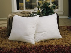 Euro Square Pillows - 2Pk