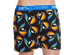 Rainbow Dash All Over Print Boxer