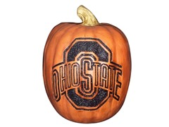 Resin Pumpkin - Ohio State