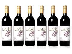 Lang Wines Syrah (6)