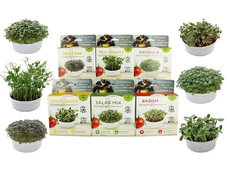 True Leaf Mini Microgreen Growing Kits