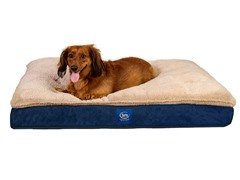Serta Super Pillowtop Memory Foam Pet Bed-Blue-L