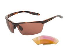 Native Polarized Sunglasses, Cooper/Tort