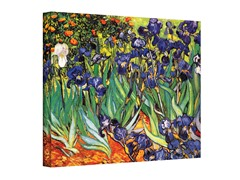 Irises in the Garden by van Gogh (3 Sizes)