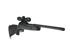 Big Cat .22 Air Rifle