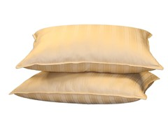 Jumbo Pillows-Gold 2Pk