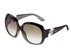 Ferragamo Women's Sunglasses