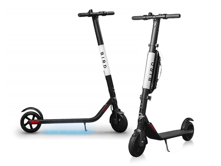Bird Electric Scooters