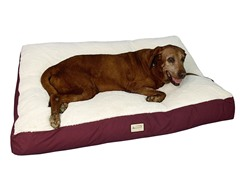 Pet Bed Mat - Ivory - Large