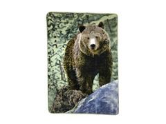 Hi Pile Printed 60x80 Throw-Bear on Rock