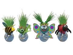 Grow-a-Head Bugs 4-Pack