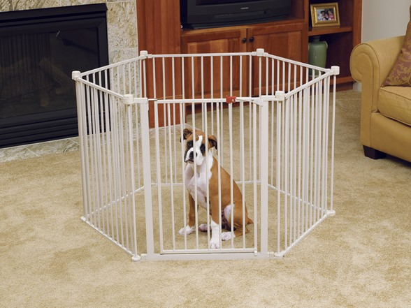 Carlson 144 Inch Wide Gate And Pet Pen