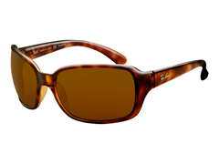 Polarized Oversized Sunglasses, Tortoise