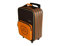 Orange Mini Travel Luggage