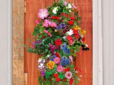 Flower Garden Refresh!