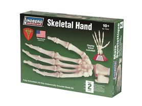 Lindberg Skeletal Hand Model Kit