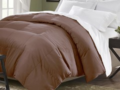 Down Blend Comforter-Chocolate-2 Sizes