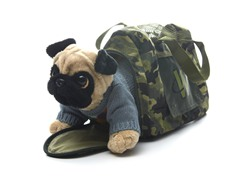 Pug & Carrier with Sweater