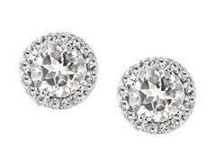SS White CZ Halo Stud Earrings
