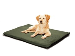 Orthopedic Foam Bed Suede Forest- 2 Sizes