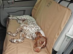 Rear Car Seat Protector, Tan