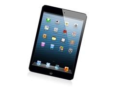 16GB iPad mini with Wi-Fi